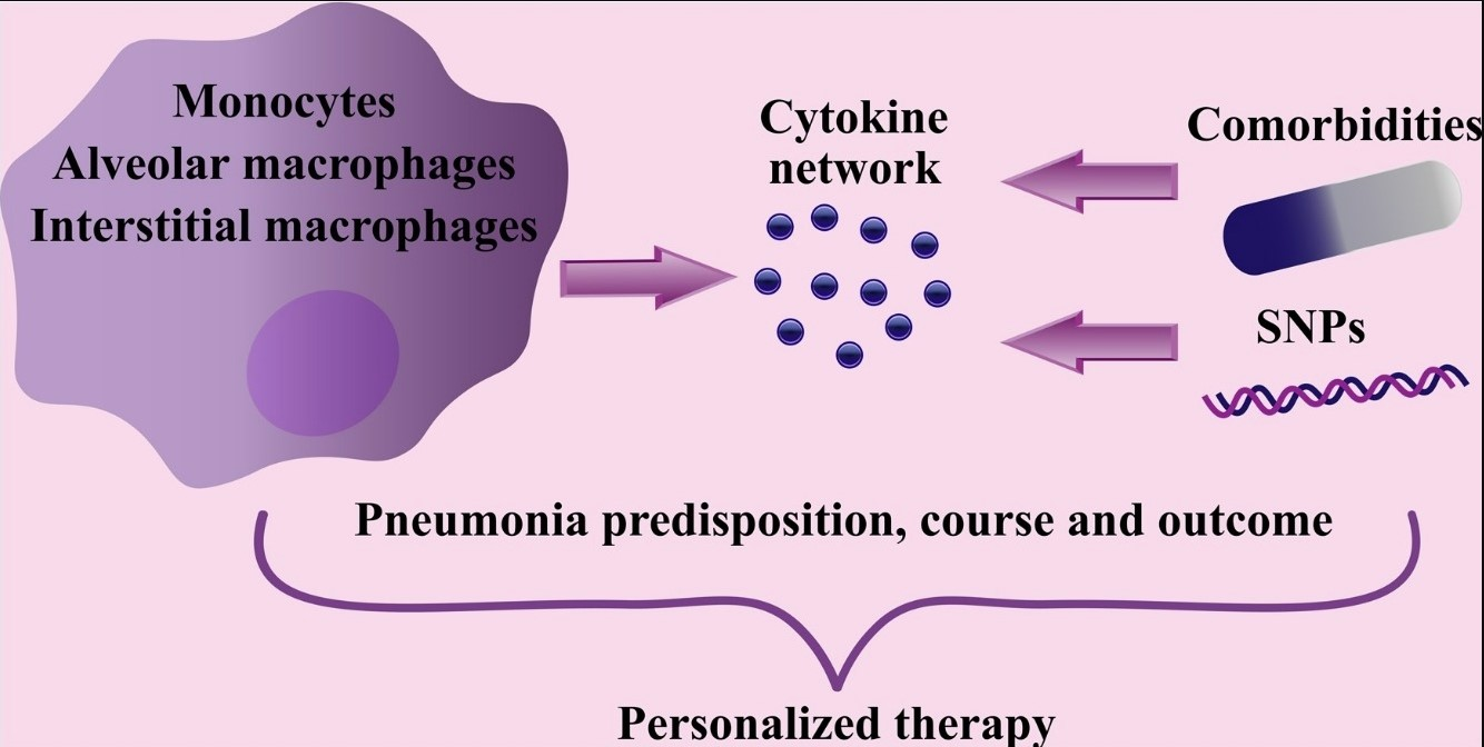 Macrophage-derived cytokines in pneumonia: linking cellular immunology and genetics